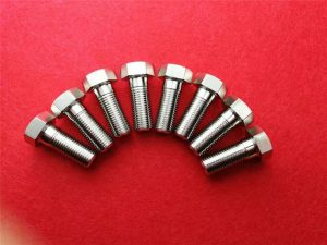 Steel Stee304 Clinching screw / sagi genep Kepala baud SS 304 Truss Kepala baud