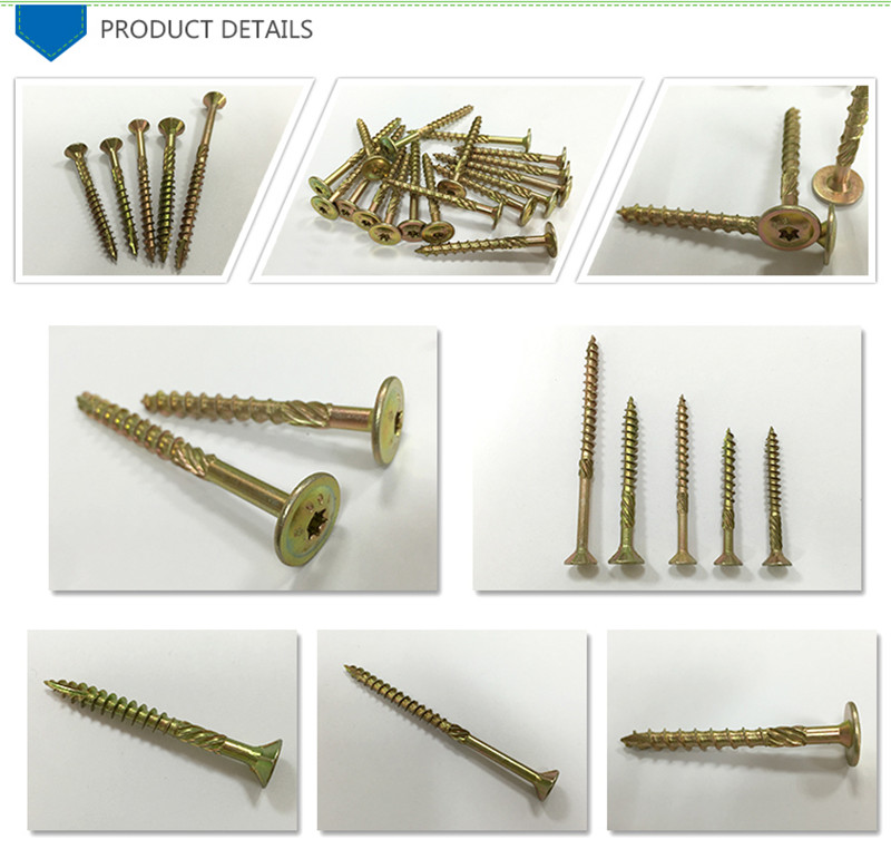 China Manufacturer Ss Interference Screw