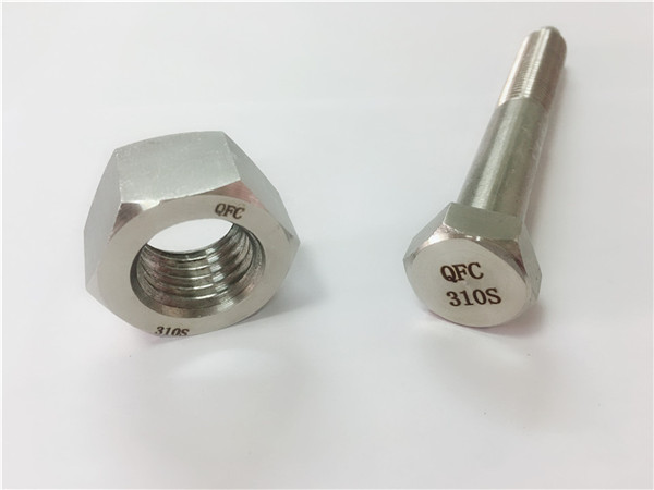 china screw and nut ss310s