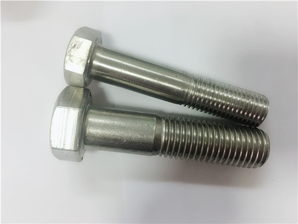 cold/hot forged hex head bolt a4-80 din931